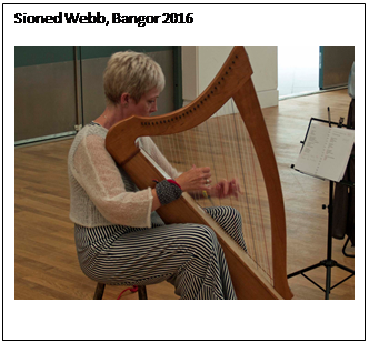 Text Box: Sioned Webb, Bangor 2016